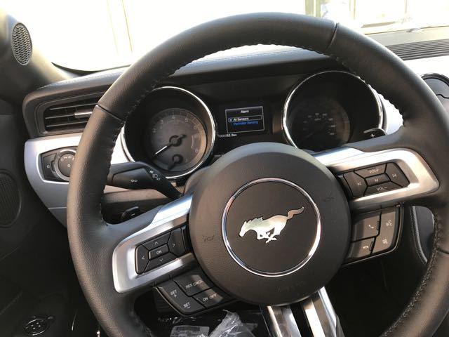 平行进口福特野马 更加陪衬出镀铬车标的气魄来