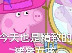 精致的猪猪爱上都表情这样的冷静好车嚼精致女孩包下药粒图图片