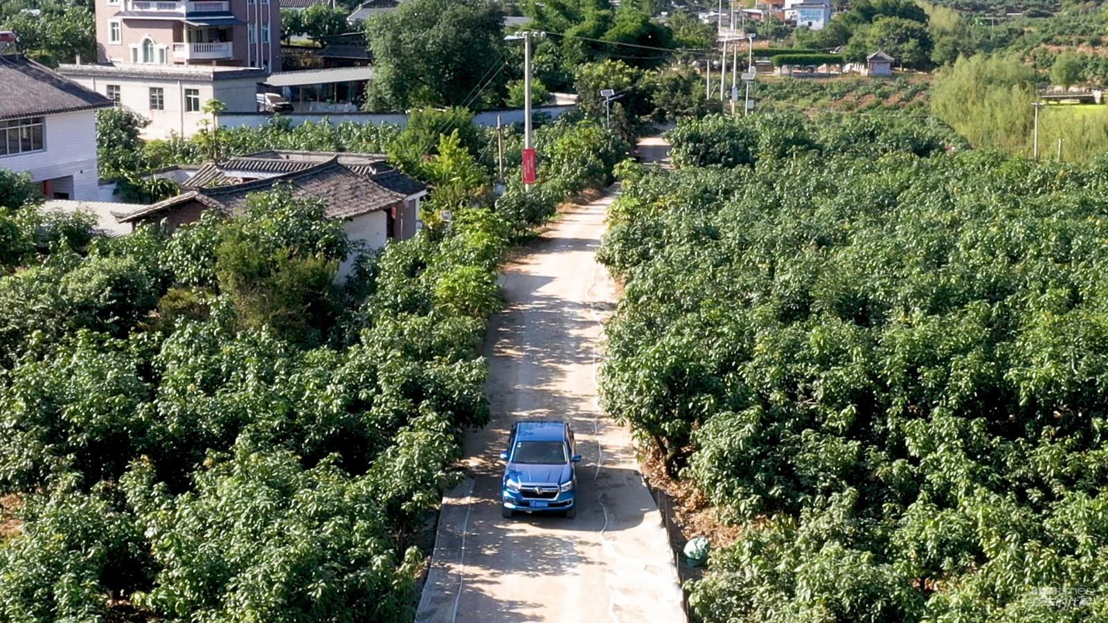 山间芒果的遥望,郑州日产皮卡村混撒拉的幸福之路